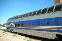 1980's Dome trains